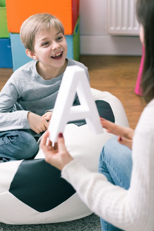 Early intervention family therapy services